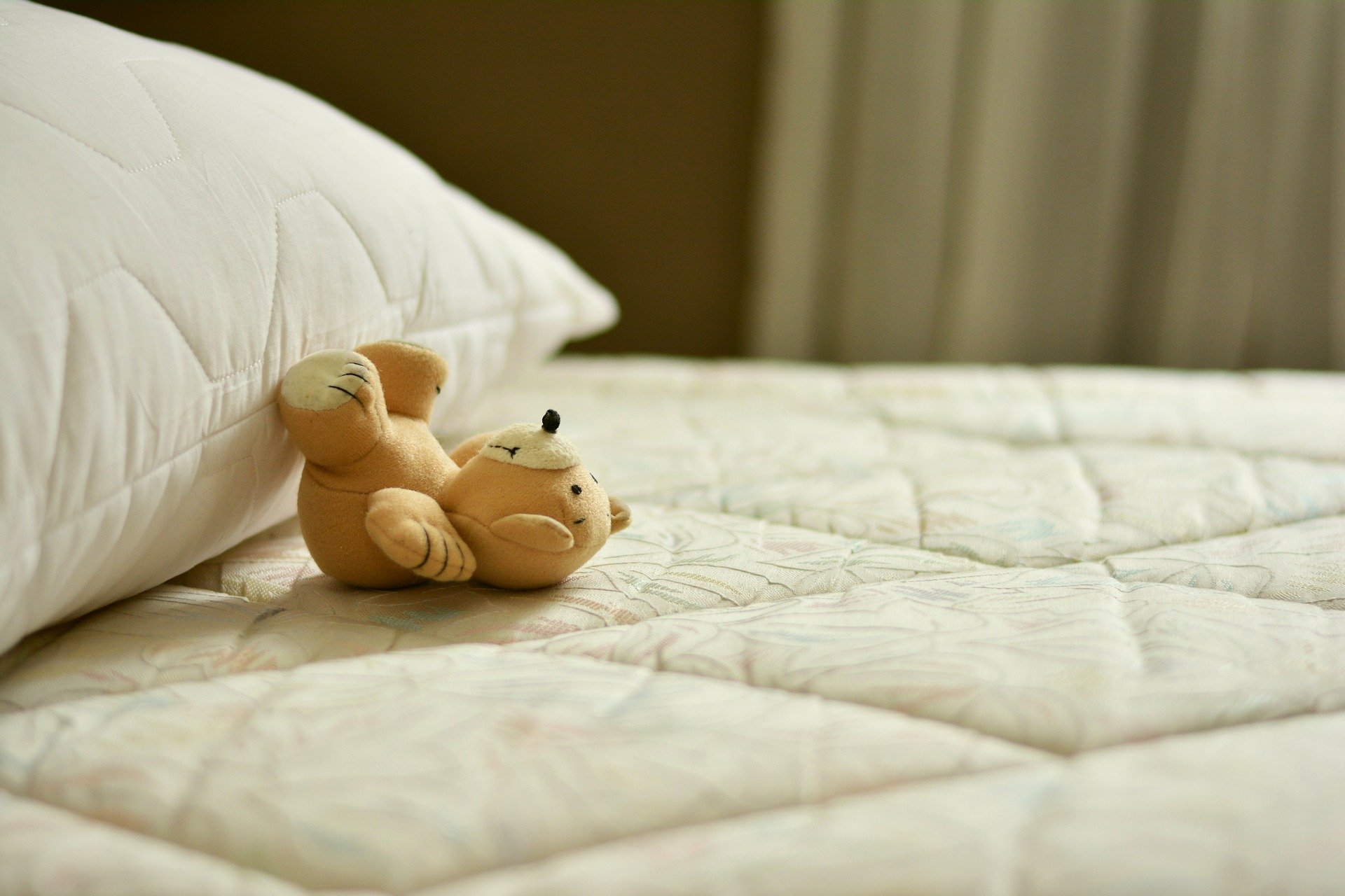 Est-ce que les punaises de lit sautent ?